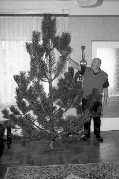 giving the tree the trim