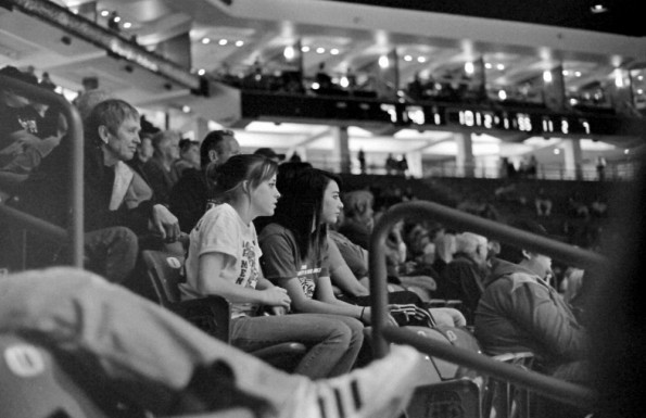 stadium audience